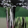 Buisson (falaises), 2017, huile sur toile, 76, 2 x 76, 2 cm