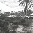 Vue de Djerba (champ et maison), 2007, fusain sur papier, 50 x 60 cm