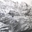 Vue de Djerba (champ, ronces, nuage), 2007, fusain sur papier, 50 x 60 cm
