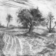 Vue de Djerba (terre labourée), 2007, fusain sur papier, 50 x 60 cm