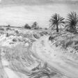 Vue de Djerba (virage), 2007, fusain sur papier, 50 x 60 cm
