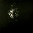 Sans titre, 2005, huile sur toile, dimensions perdues