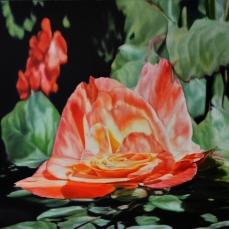 Rose, 2012, huile sur toile, 110 x 150 cm