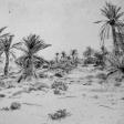 Vue de Djerba, 2006, encre sur papier, dimensions perdues