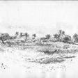 Vue de Djerba, 2006, encre sur papier, 21 x 30 cm